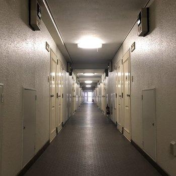 お部屋数がとても多いんです。2階の共用部分です。