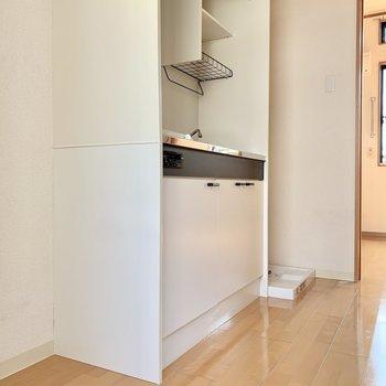 キッチンを挟んで左右に冷蔵庫と洗濯機ですね