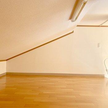 天井が高いところなら、155cmの私が中腰で移動できます
