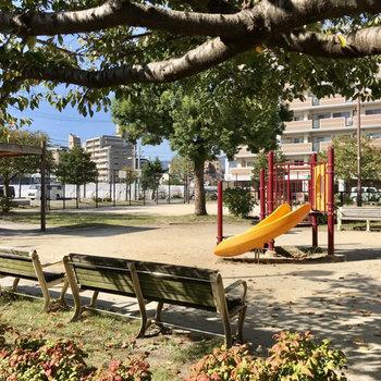 公園とダイアリー