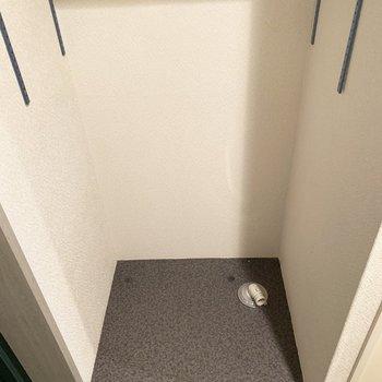 洗濯パンは玄関横に。(※写真は9階の同間取り別部屋、清掃前のものです)