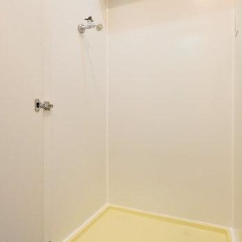 洗濯置き場は扉で隠されています