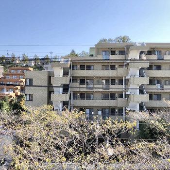 窓からは道路とマンションが見えます