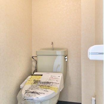 淡いグリーンのトイレです