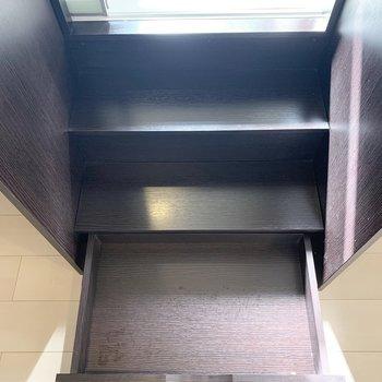水廻り入口の階段の下段にも収納が。トイレットペーパーやティッシュ等消耗品の収納に便利そう。
