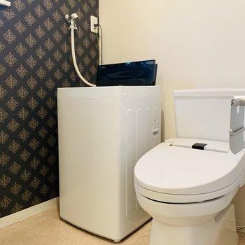 右側には洗濯機とトイレ。上部には棚もありました。