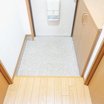 玄関は適度な広さで2人ぐらいは同時に入れそうです。