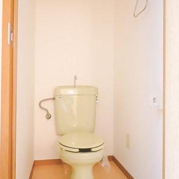 トイレはちょっとレトロですが、しっかり清潔にされていました。