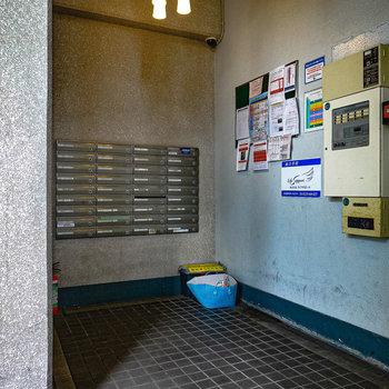 エントランス内。メールボックスの左にエレベーター。
