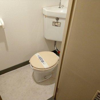 シンプルなトイレ。かわいく飾りたい。
