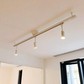 スポットライト。照らす角度を変えられます。※写真は2階の同間取り別部屋のものです