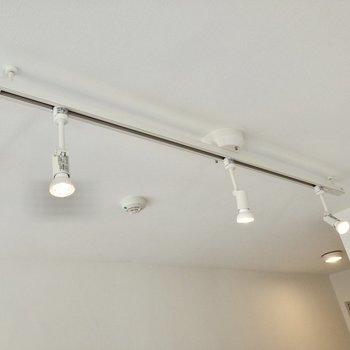 天井にはダウンライト。穏やかな怒りが包みます。