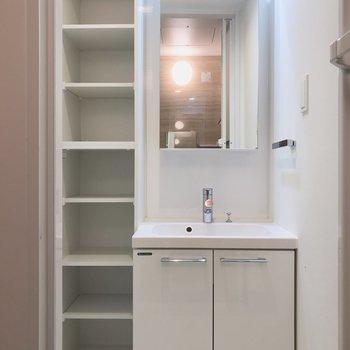 洗面台には、大きな鏡と収納棚があります