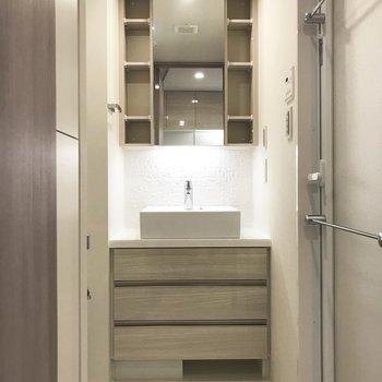鏡の裏にも収納がありますよ※写真は3階の同間取り別部屋のものです
