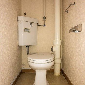 トイレは個室で嬉しい。