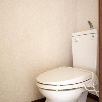 トイレも綺麗でしたよ。