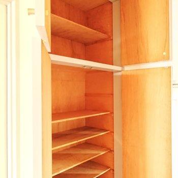 上にも棚がありました。かなり入る靴箱になっていますよ。