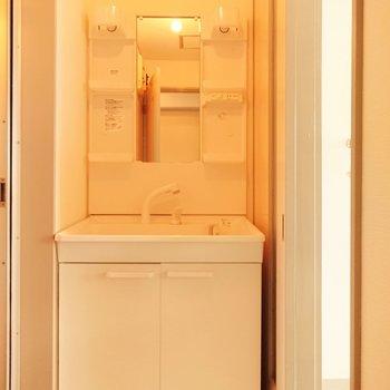 シャワーノズルの洗面台です。寝癖もすぐ直せます。