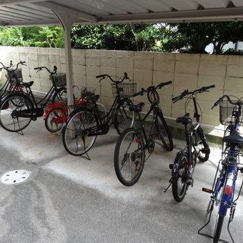 自転車置き場も綺麗に使われていました。