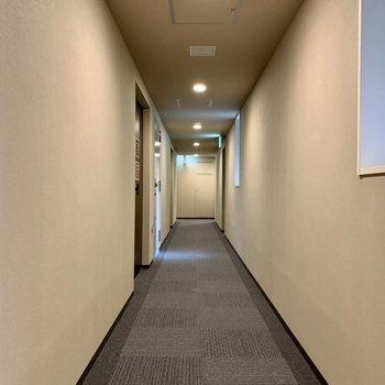 ホテルような共用廊下。