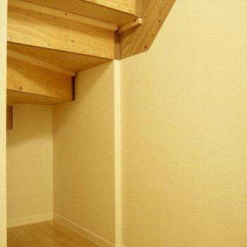 そして、階段の下に収納もありました!