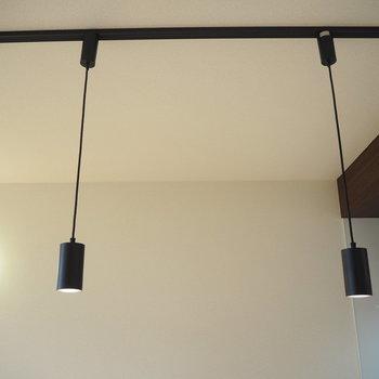 リビングにぶら下がってた照明。このしたにダイニングテーブルを置こうかな?