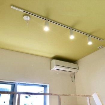 天井は鮮やかなシトラスグリーン。癒やされます。