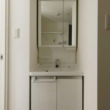洗面台は鏡の中にも収納できるタイプ!