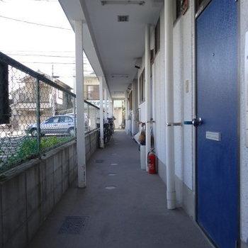 共用部は年月を感じます。でも。ブルーの扉がお気に入り!