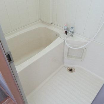 お風呂もきれいで清潔感たっぷり。