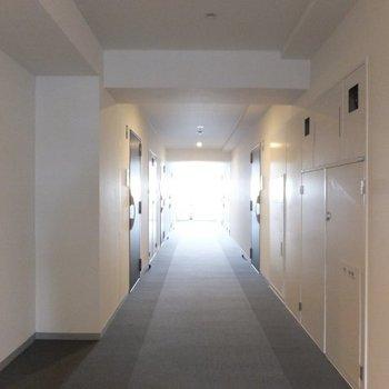 絨毯の敷かれた内廊下。