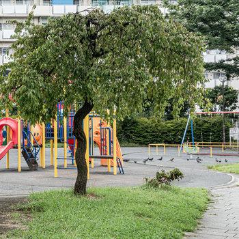 近所に広めの公園があります。