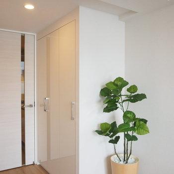クローゼットは角に。※写真は4階の同間取り別部屋のものです