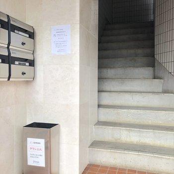 この階段を登っていきます。