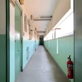 お部屋の前の廊下はグリーン
