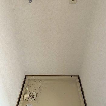 洗濯パンは脱衣所に。(※写真は5階の同間取り別部屋、清掃前のものです)
