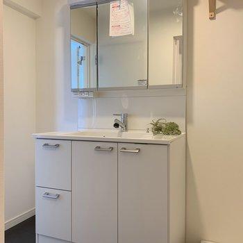 鏡の裏は収納!新品で、使い勝手はバツグン。※写真は3階反転間取り別部屋のものです