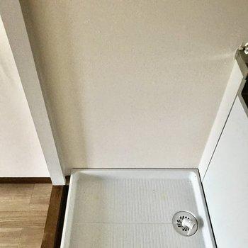 キッチン横に洗濯パンがあります。※写真は通電前のものです