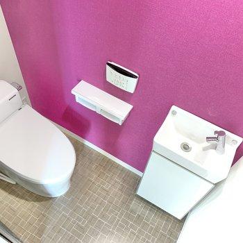 サニタリールームのドアすぐにトイレ!ミニサイズの洗面台もあります。
