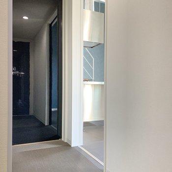 奥の扉がサニタリールーム。洋室のブルーが隣でちらり。