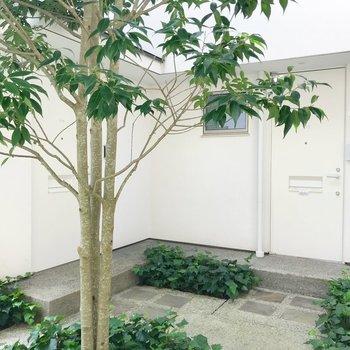 中庭を囲むように、お部屋があります。