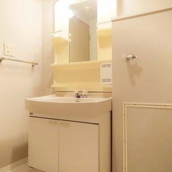 鏡の横には歯ブラシや化粧水も整理して置けそうです。
