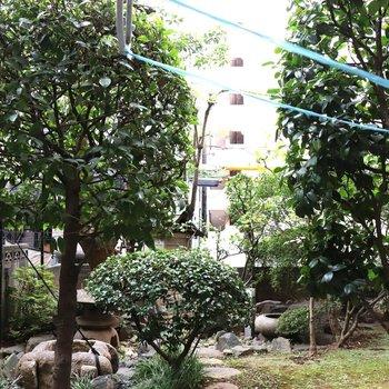 バルコニーの前は庭園