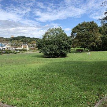 お隣は、緑豊かな堀之内番場公園。