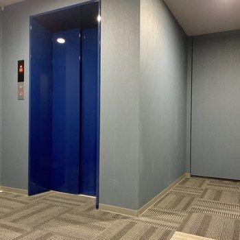 エレベーターは青い。