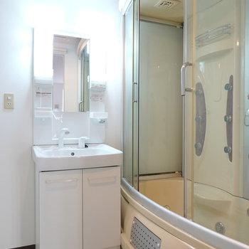 右手には洗面台と、タイムカプセルのようなお風呂が!