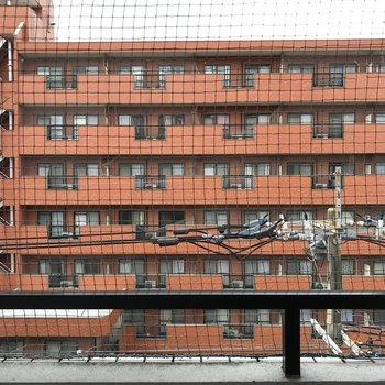 道路挟んで向かい側のマンションがチラリ。鳥よけネットもありますよ