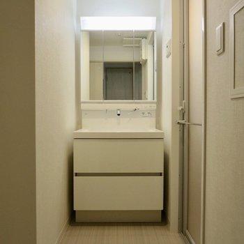 続いてサニタリーへ、大きくて使いやすそうな洗面台です※写真は3階の同間取り別部屋のものです