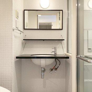 向かいのサニタリー。洗面台の下も上手く収納スペースとして使えそうです