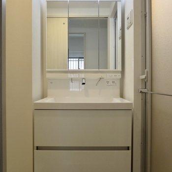 続いてサニタリーへ、大きな洗面台はとっても使いやすそう※写真は1階の同間取り別部屋のものです